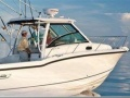 Boston Whaler 285 Conquest Imbarcazione Sportiva
