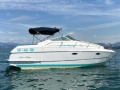 Chris Craft crowne 233 Daycruiser
