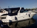 Sea Ray 315 DA Daycruiser