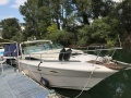 Sea Ray 300 Sun Cruiser Sportboot