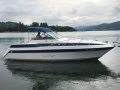 Chris Craft 262 Sport Day Cruiser