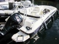 Bayliner Element 160 / E5 mit 60 PS Sportboot