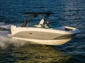Sea Ray SDX 250 OB Sportboot