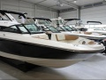 Sea Ray SPX 210 OB mit Trailerset Sportboot