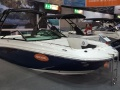 Sea Ray SDX 250 US Sportboot