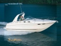 Sea Ray 290 Sundancer Sportboot