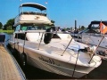 Sea Ray 300 Sedanlongbridge Flybridge Yacht