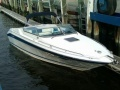 Sea Ray 260 OV Offshoreboot