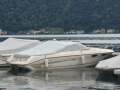 Sea Ray 230 OV Select Daycruiser