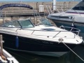 Sea Ray 240 SEE Motoryacht