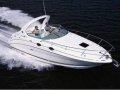 Sea Ray 315 DA Sportboot