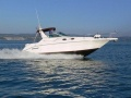 Sea Ray 300 Sundancer Sportboot