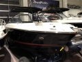 Sea Ray 250SLXE Bowrider