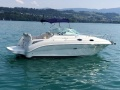Sea Ray 255 DAE Day Cruiser
