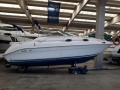 Sea Ray 250 SUNDANCER Pontoon Boat