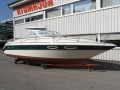Sea Ray 230 CC Sportboot