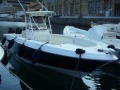 Wellcraft Scarab 35 Deck Boat