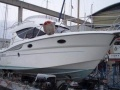 Sessa DORADO 32 Flybridge
