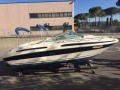 Sea Ray 215 Pontoon Boat