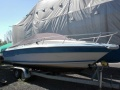 Sea Ray Seville 21 Sportboot