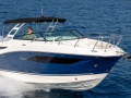Sea Ray Sundancer 290 Urheiluvene