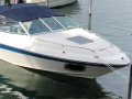 Sea Ray 200 CC Sportboot