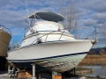 Bertram 28 Fly Flybridge