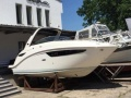 Sea Ray 265 Sundancer 350 MPI DTS KAT Sportboot