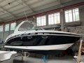 Chaparral CHAPPARAL 250 Motoryacht