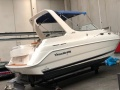 Wellcraft 2600 Martinique Imbarcazione Sportiva