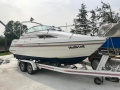 Sealine 200 Family Sportboot