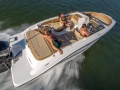 Sea Ray 21 SP OB  Wake EVI Speedboot