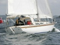 Orion Rustler 36 Sailing Yacht