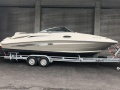 Sea Ray 260 Br Sportboot