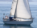 Catalina 30 Sailing Yacht