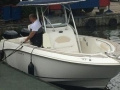 Boston Whaler 270 Outrage Konsolenboot