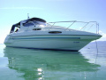 Sealine 310 Semicabinato