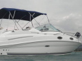 Sea Ray 240 SUNDANCER Barco desportivo