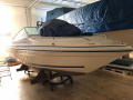 Sea Ray 200 SX Sportboot