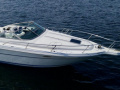 Sea Ray 300 Weekender Yacht a Motore