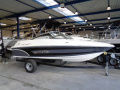 Campion Chase 550 BR Sportboot