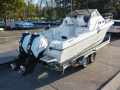 Bayliner Trophy 2502 Offshoreboot