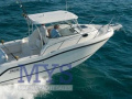 Boston Whaler 255 Conquest Imbarcazione Sportiva