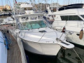 Albemarle 310 XF Features Sportboot