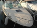 Sea Ray 260 OV Daycruiser